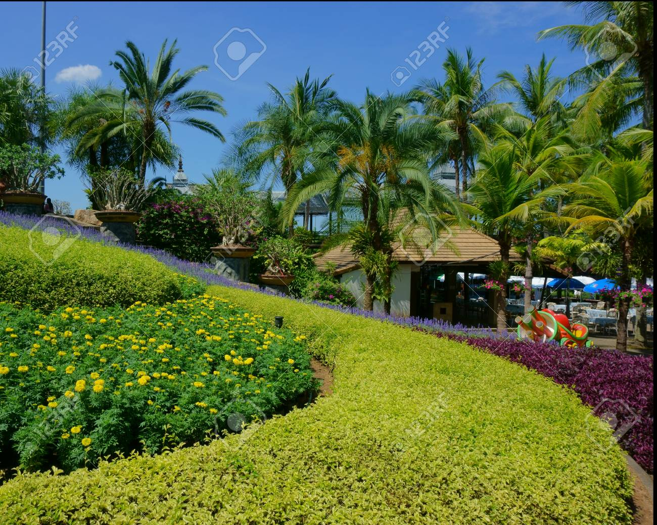 Beautiful Flower Beds In The Park Stock Photo Picture And Royalty