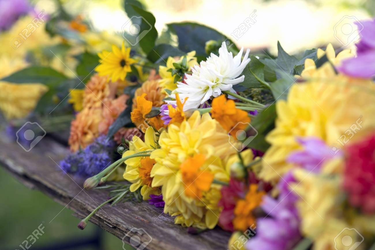 Fleurs Cueillies Fraîches Pour Le Bouquet De Jardin De Fleurs D ...