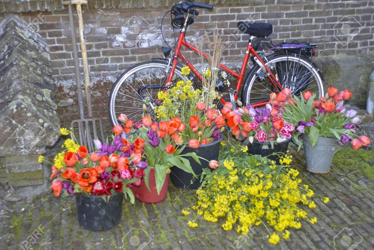 Spring Flower Bouquets In Front Of Bicycle In A Garden Stock Photo ...