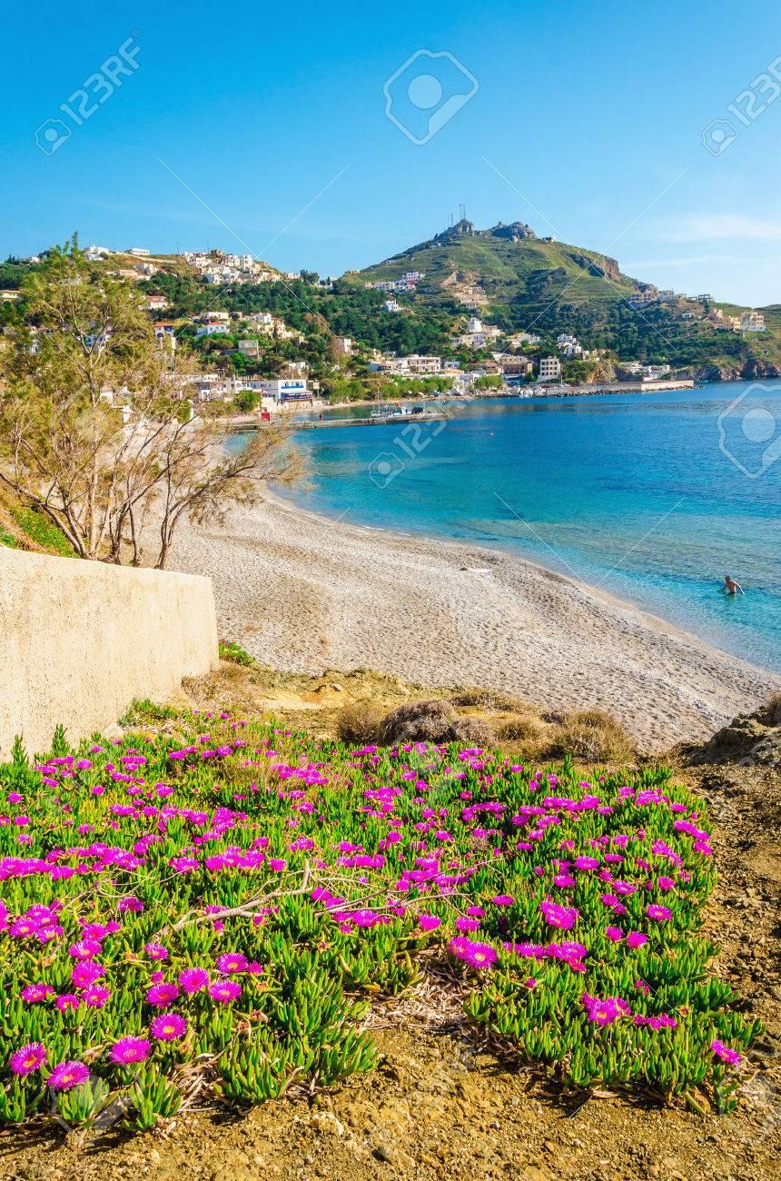 Colorful pink flowers at sandy beach on Greek Island, Kos, Greece Stock Photo - 44553736