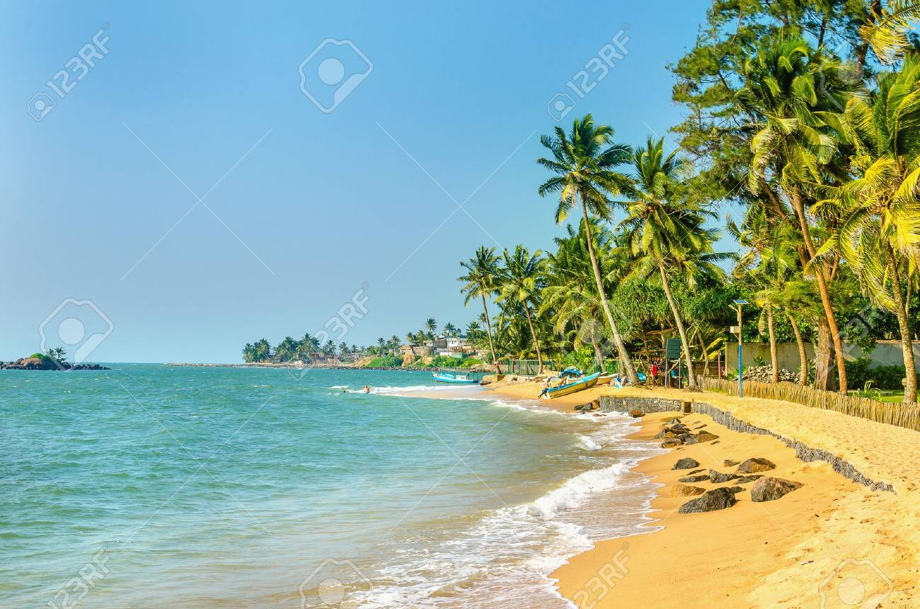 Beautiful exotic Caribbean beach of golden sand full of palm trees Stock Photo - 48574613