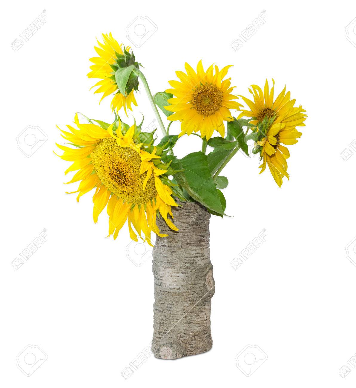 Bouquet of flowers of sunflower in a ceramic vase stylized tree bouquet of flowers of sunflower in a ceramic vase stylized tree trunk on a light reviewsmspy
