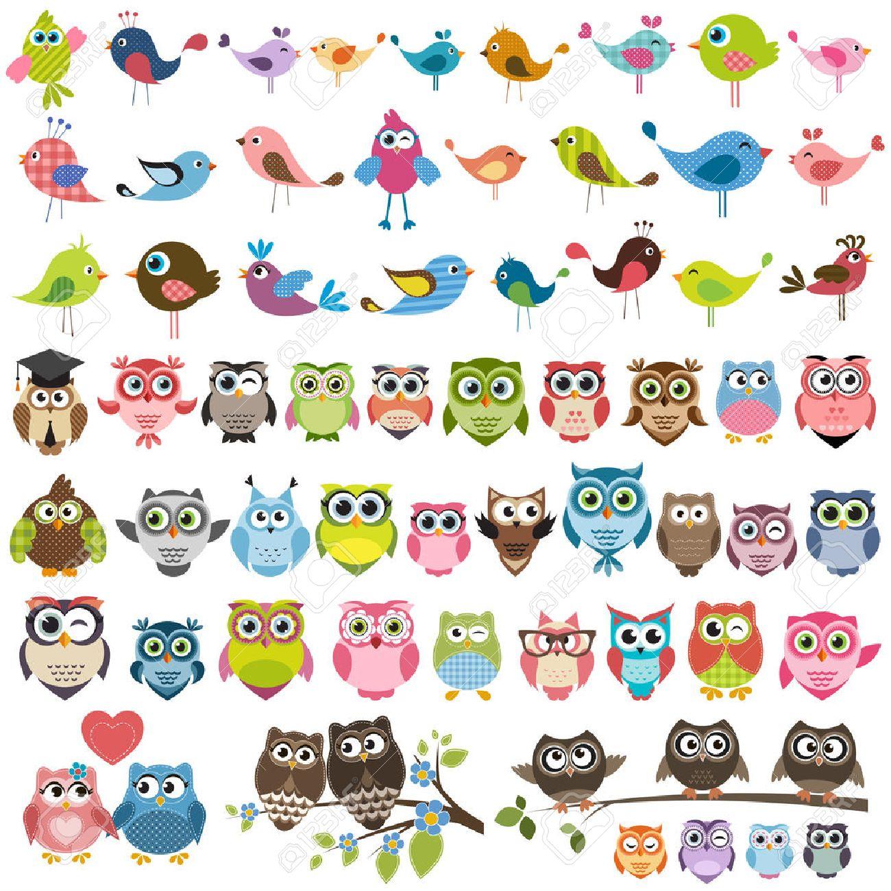 Conjunto De Dibujos Animados Coloridos Pajaros Y Buhos Ilustraciones