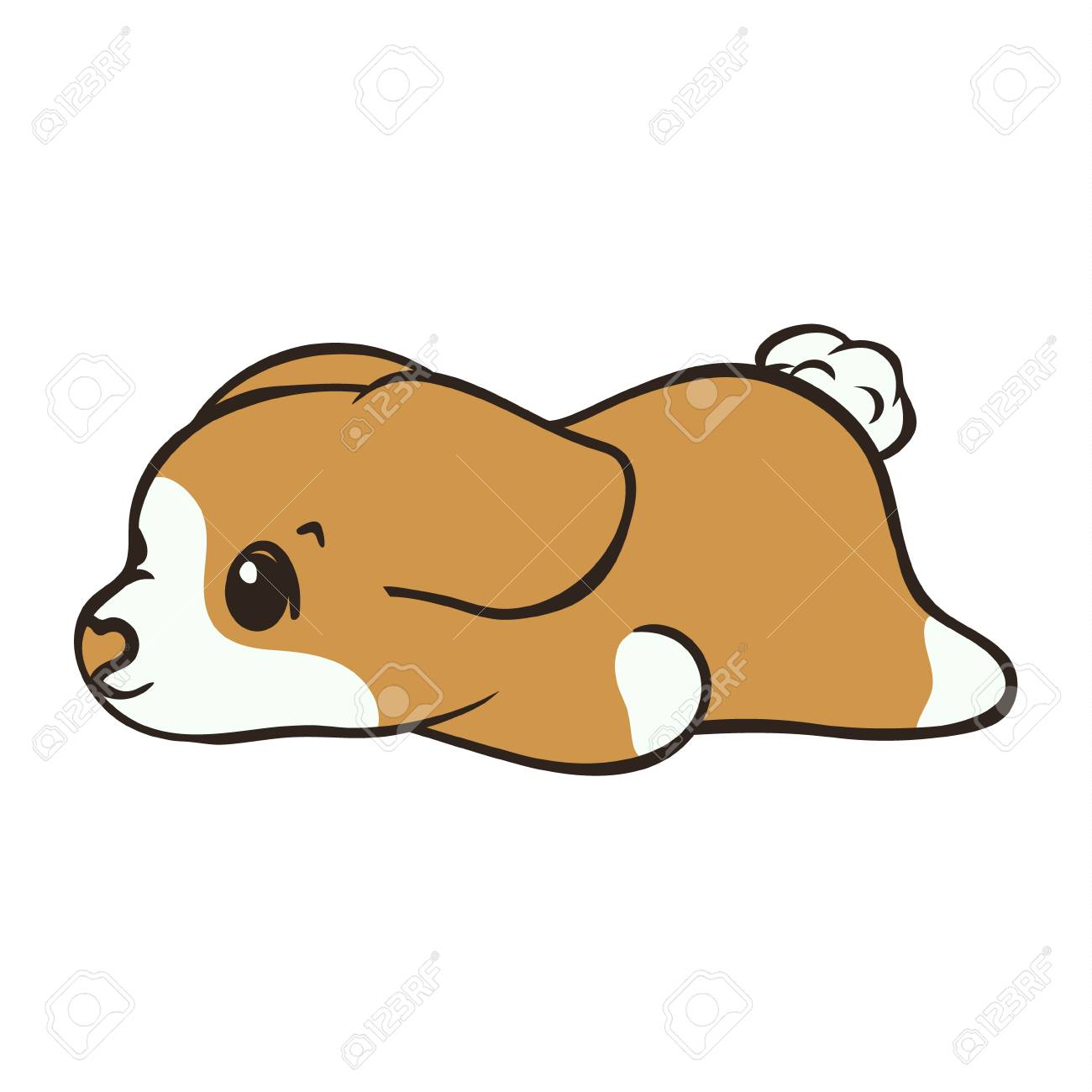 Welsh Corgi Dog Breed Vector Illustration Cute Puppy Lying Down Royalty Free Cliparts Vectors And Stock Illustration Image 121868713