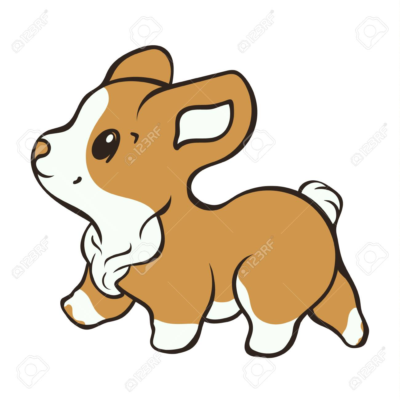 Welsh Corgi Dog Breed Vector Illustration Cute Puppy Walk Side Royalty Free Cliparts Vectors And Stock Illustration Image 121868717