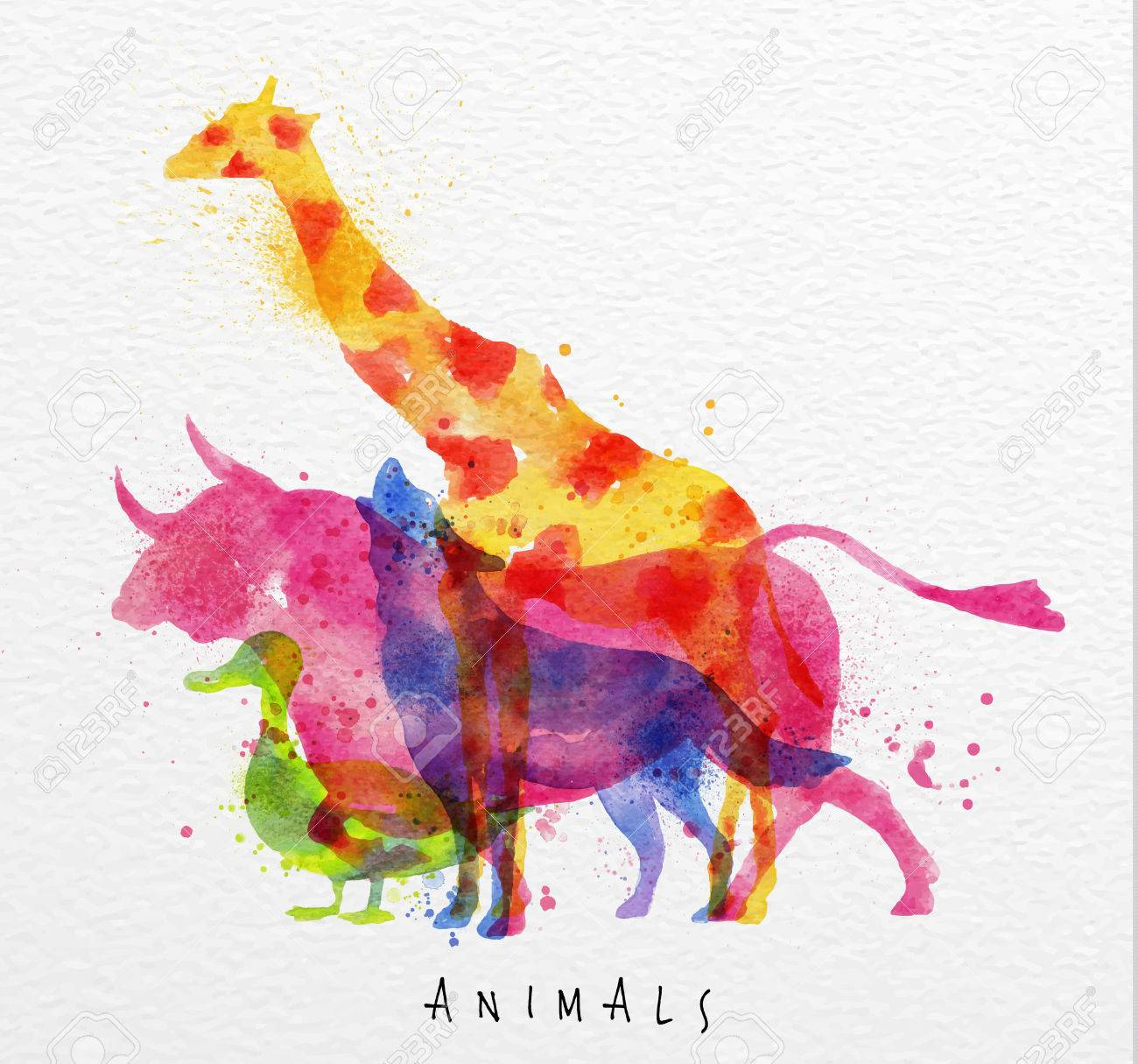 Color Animals ,giraffe, Wolf, Duck, Bull, Drawing Overprint ...