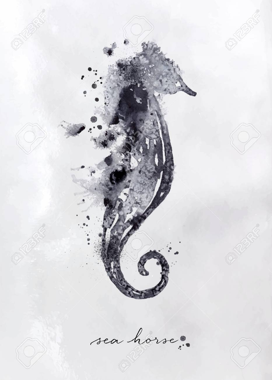 Monotype Seahorse Drawing With Black And White On Paper Background Royalty Free Cliparts Vectors And Stock Illustration Image 88253167