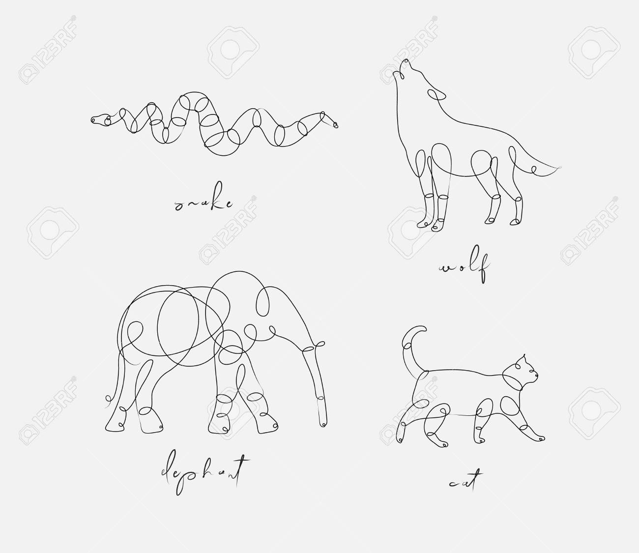 Set of animals snake, wolf, elephant, cat drawing in pen line style on light background - 126087687