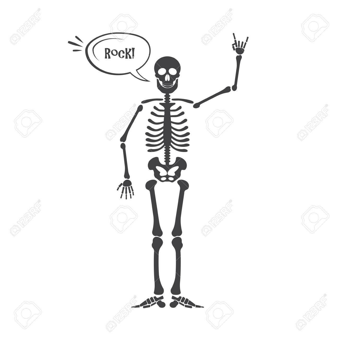 Skeleton Human Anatomy Vector Halloween Black Skeleton Isolated