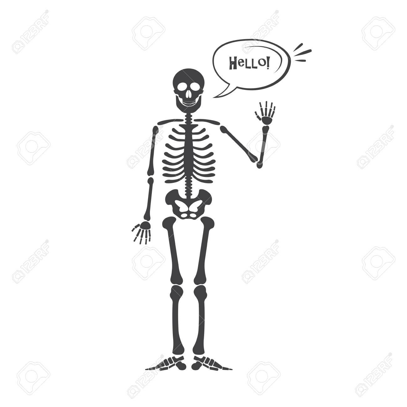 Skelet Voor Halloween.Skelet Menselijke Anatomie Vector Halloween Zwart Skelet Geisoleerd Op Wit Skelet Handteken Ok Vinger Omhoog Vinger Omlaag Vuist Middelvinger