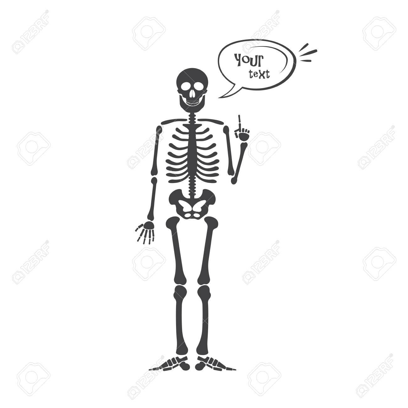 Esqueleto De La Anatomía Humana. Esqueleto De Halloween Negro ...