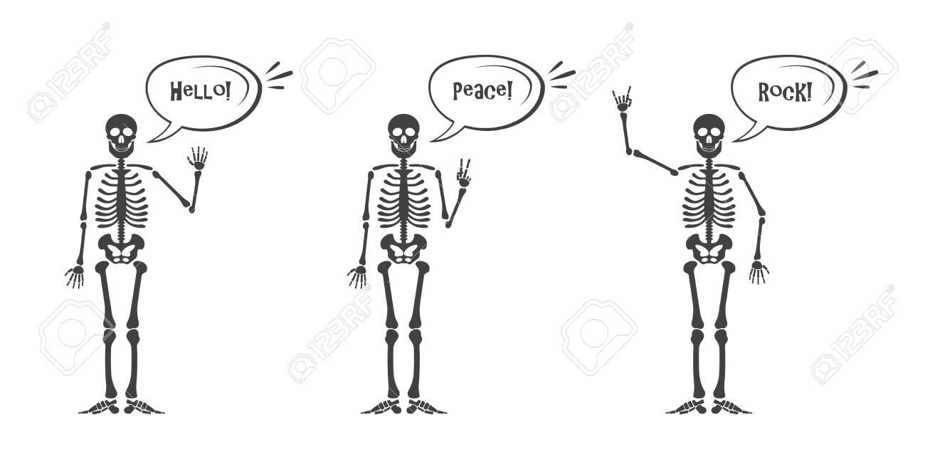 Illustration - Skeleton hand gestures set. Human skeleton posing isolated  on white background illustration