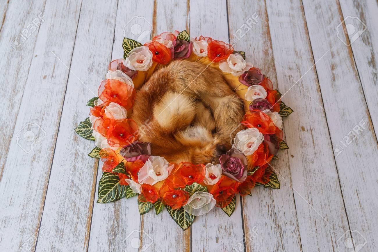 Orange Handmade Flower Circle For Newborn Babies With Fox Fur ...