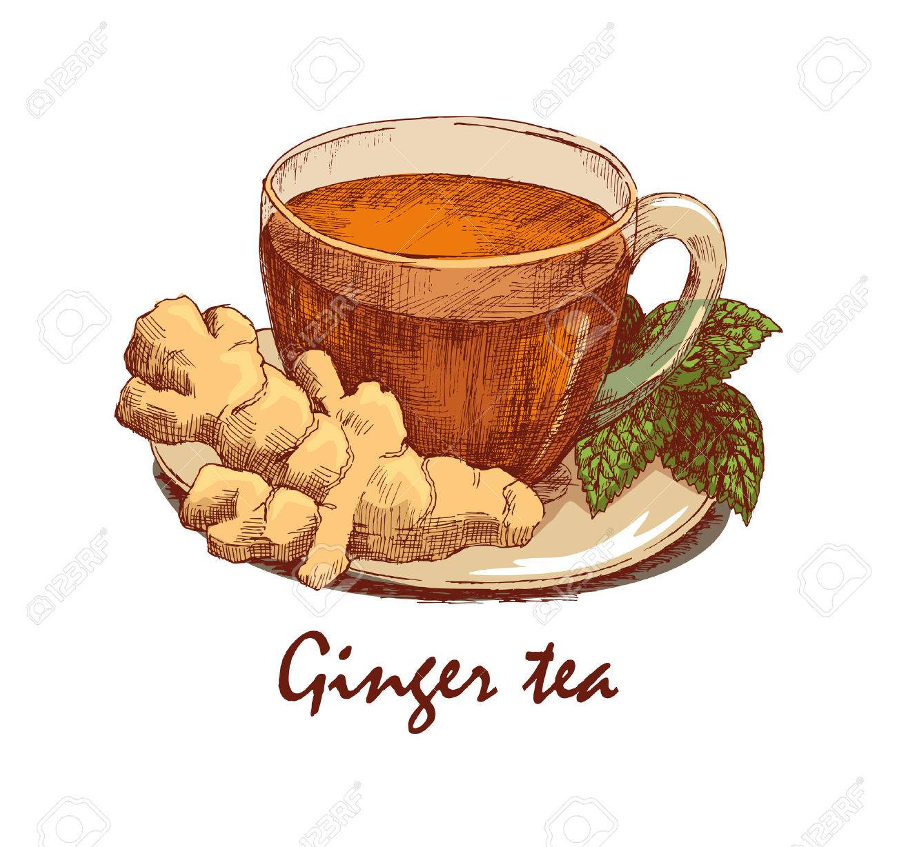 Ginger Desenho with regard to colored hand drawn cup of ginger tea. cup with tea, ginger rhizome