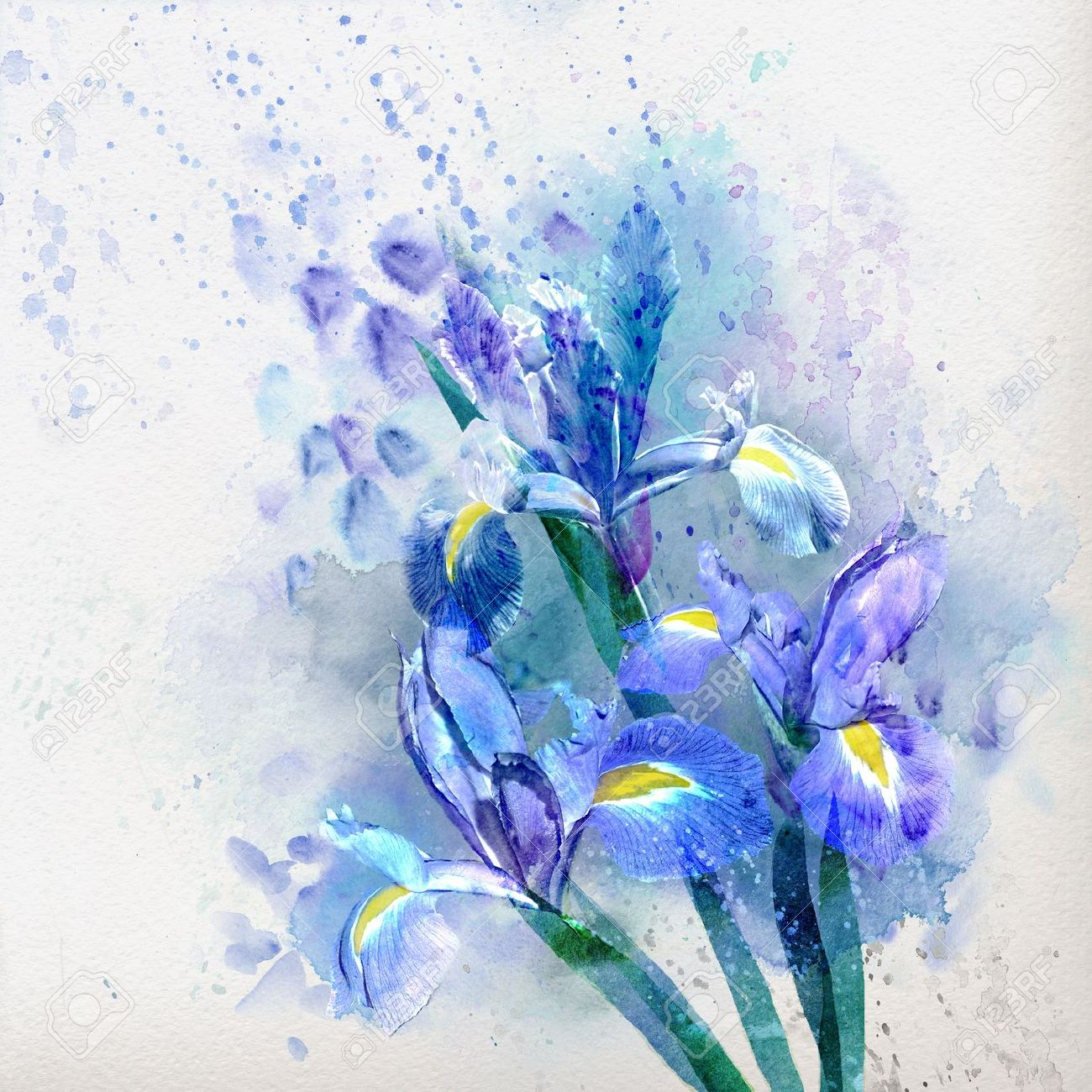 Watercolor floral background beautiful irises stock photo picture stock photo watercolor floral background beautiful irises izmirmasajfo