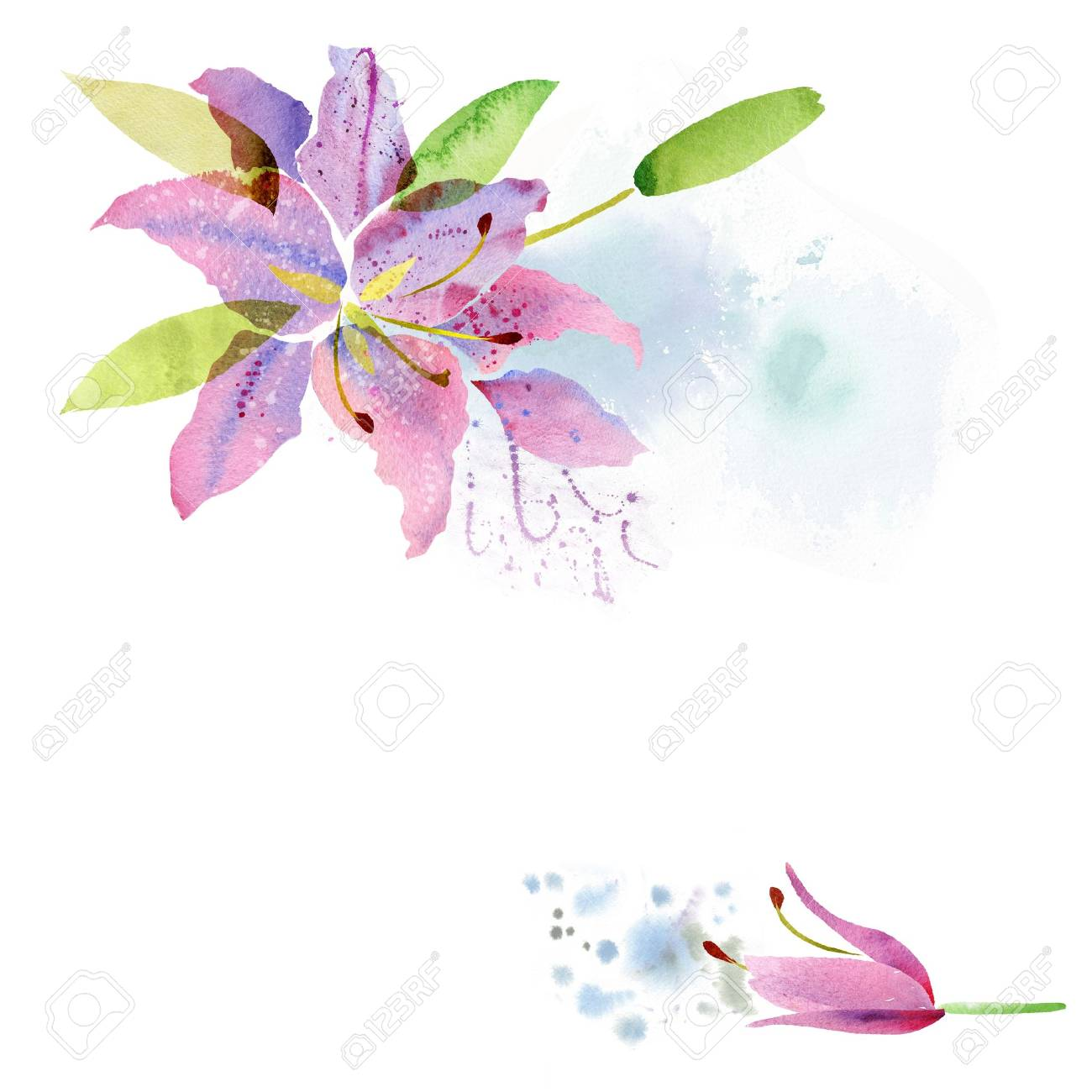Beautiful background with watercolor flowers lily - 60343685