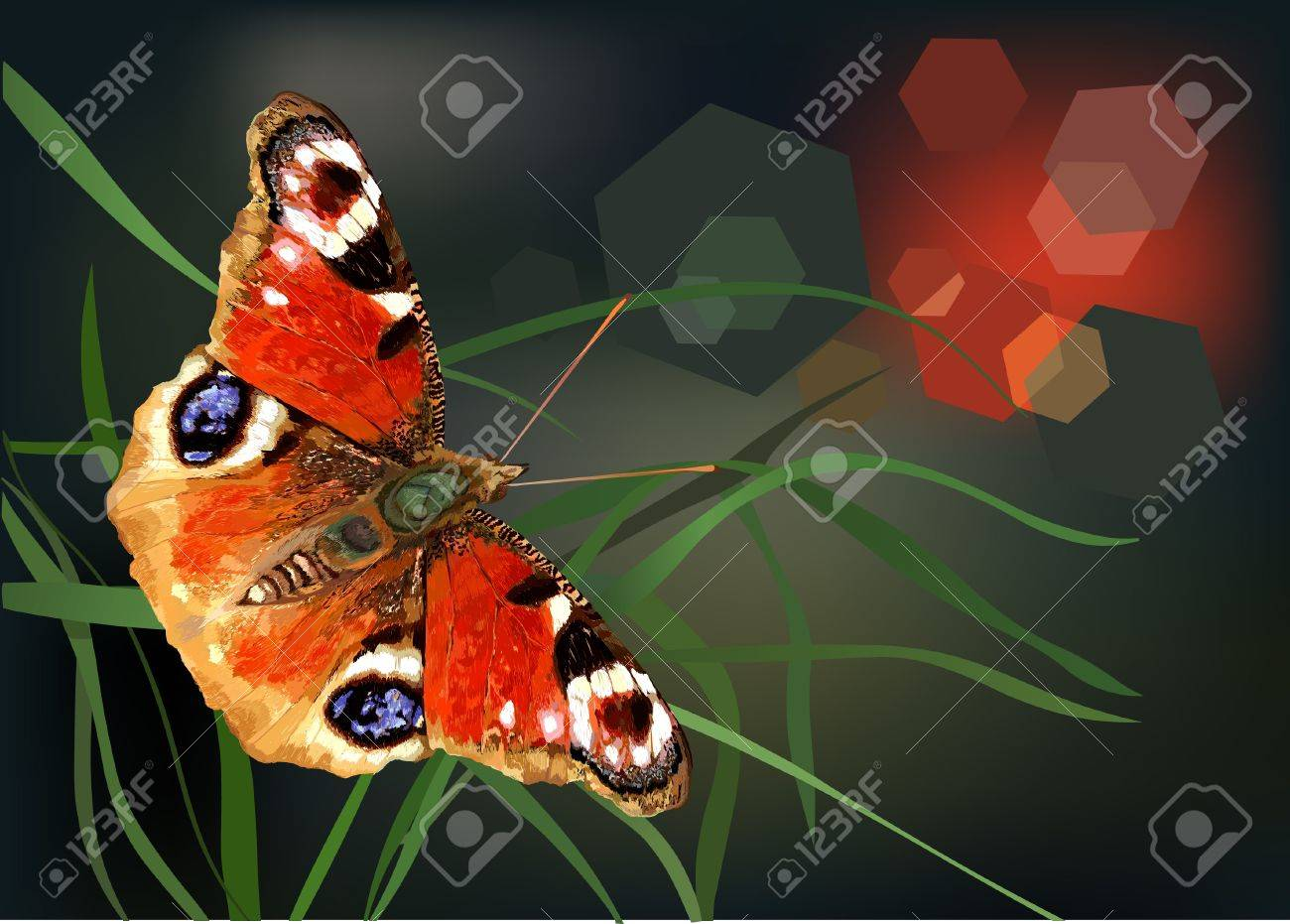 Butterfly on a flower Stock Vector - 16592193