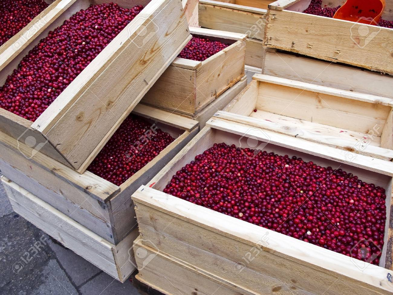 Wooden boxes with lingonberries on the market. Stock Photo - 9198349