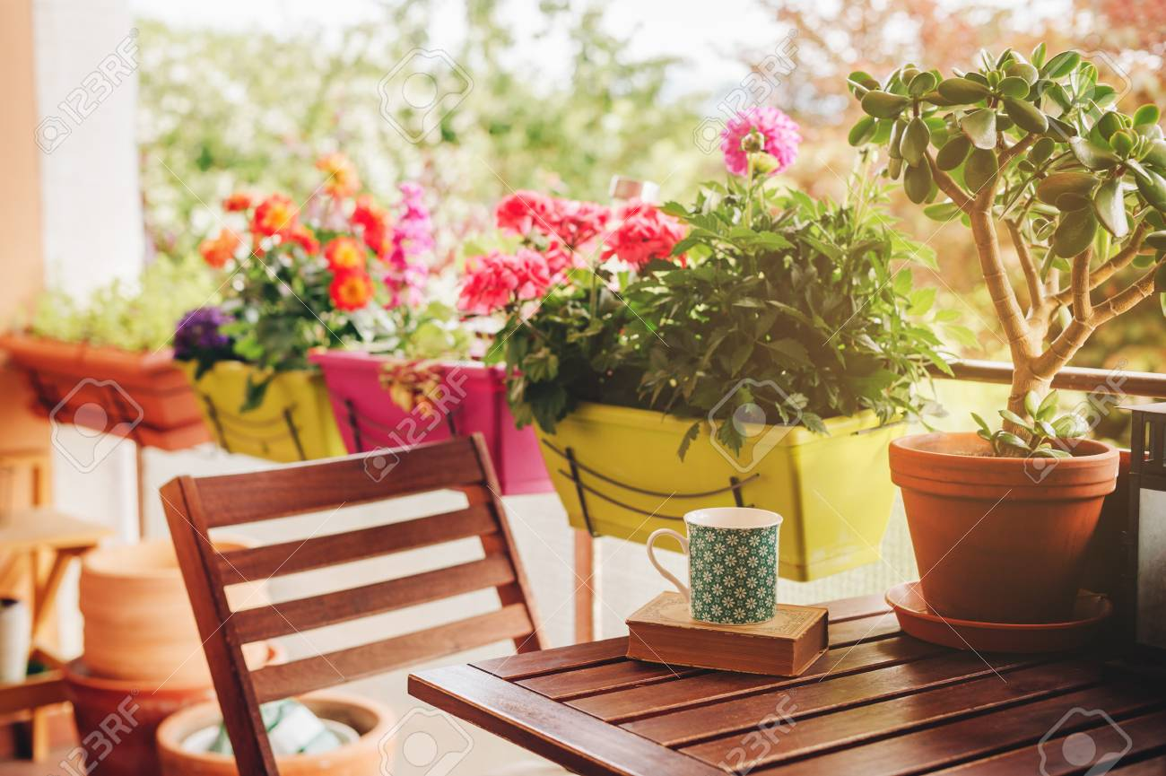 Cozy Summer Balcony With Many Potted Plants, Cup Of Tea And Old ...