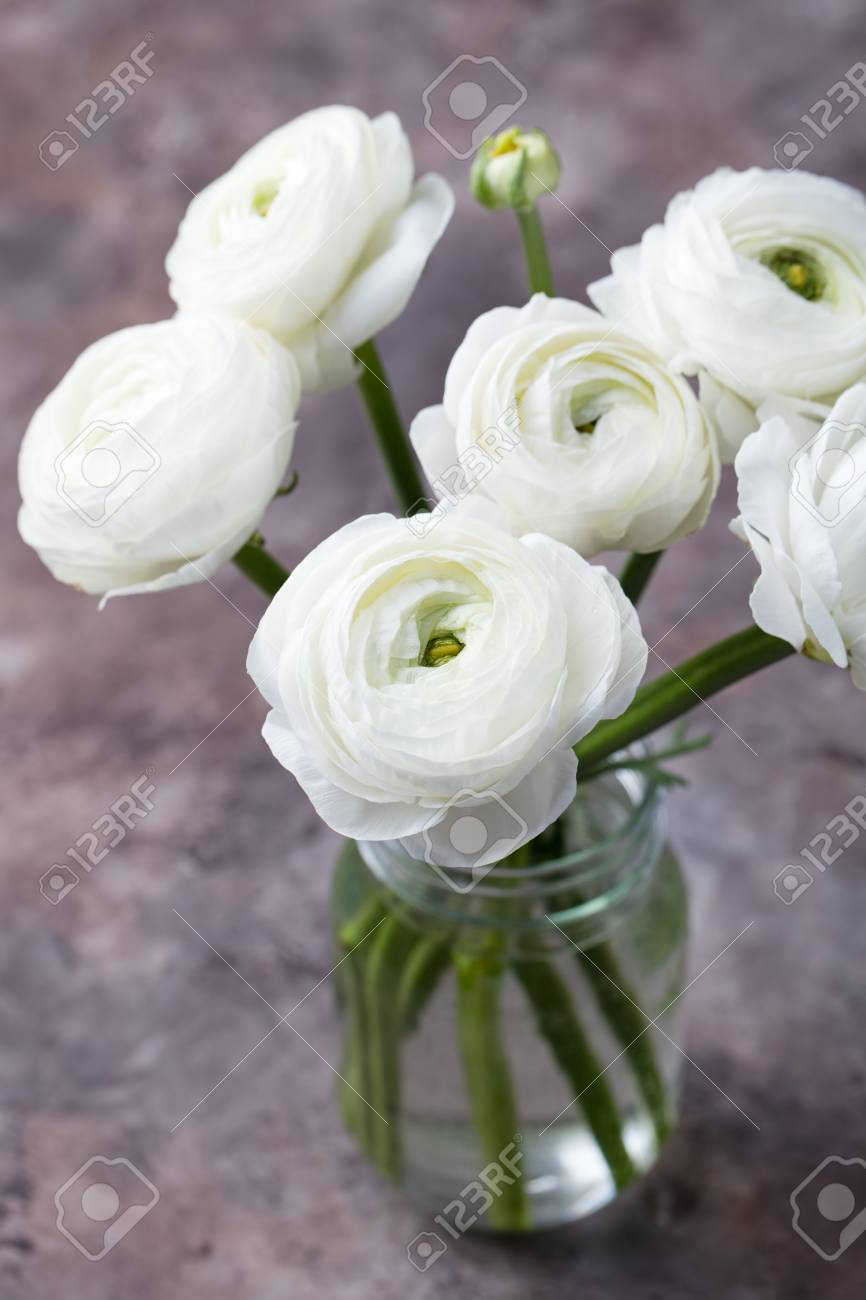 White Ranunculus Flowers In Glass Vase Grey Background Copy Space