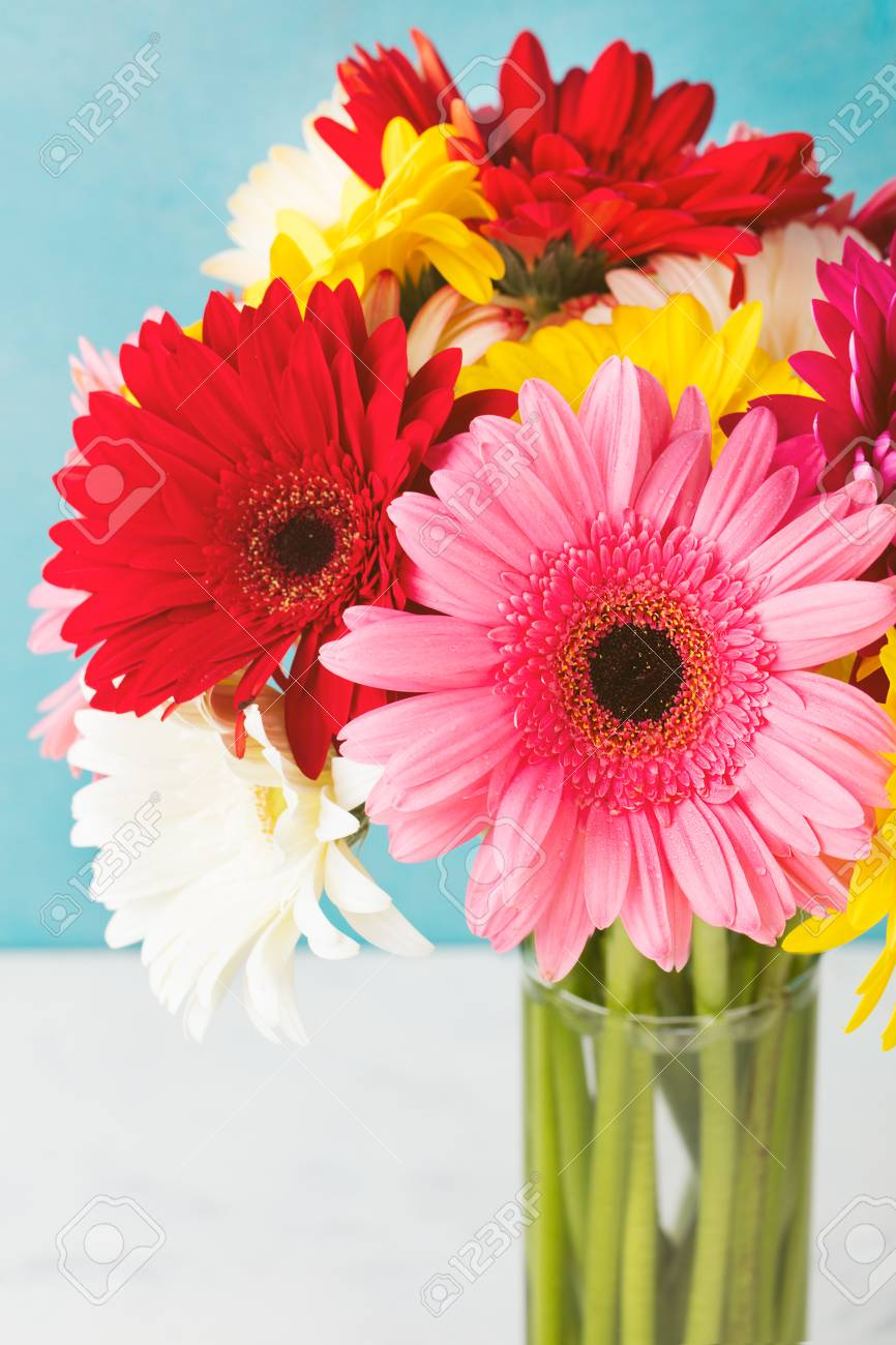 ガラス花瓶赤のガーベラの花。コピー スペース