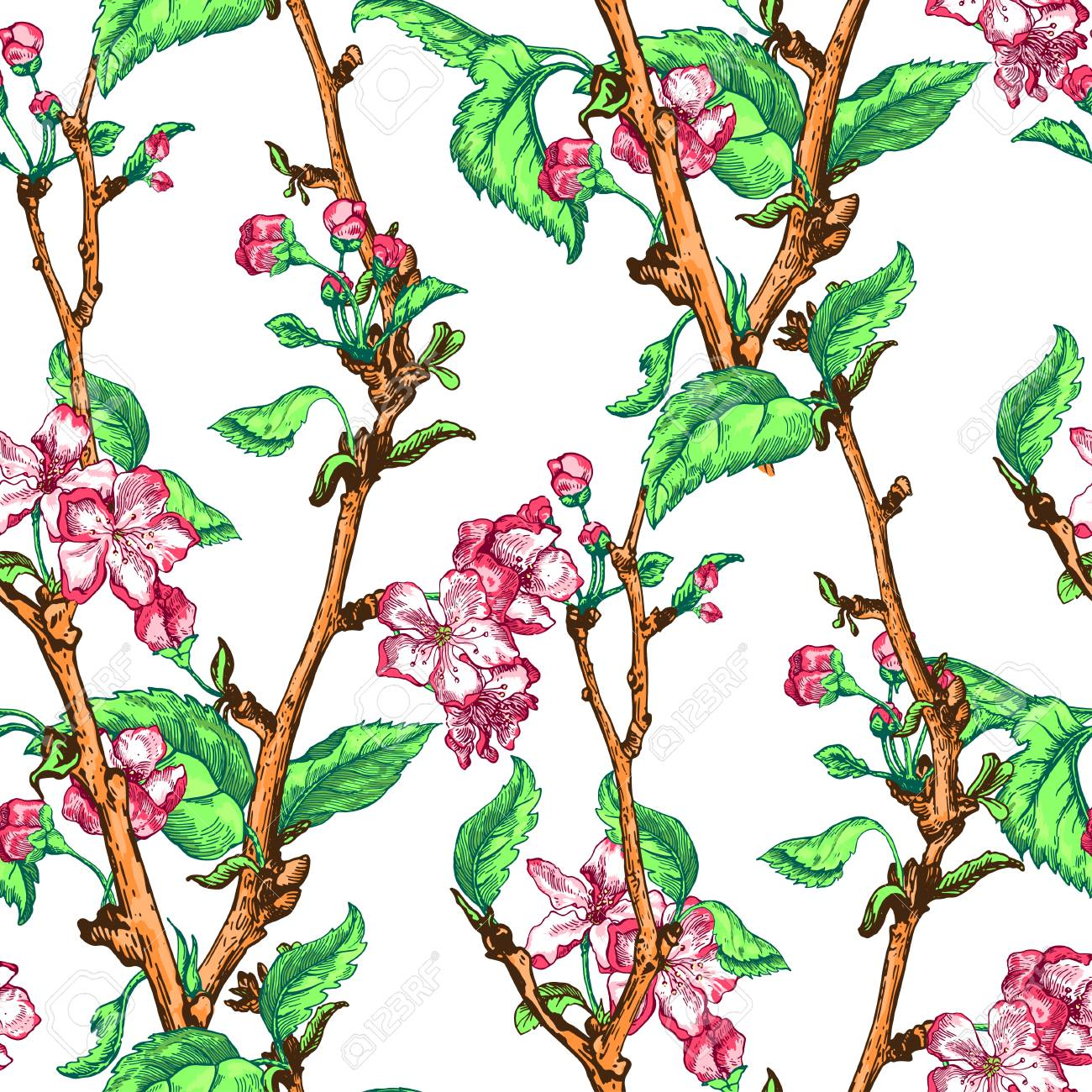 apple tree sketch design stock photo picture and royalty free image Pear Tree apple tree sketch design stock photo 73528725