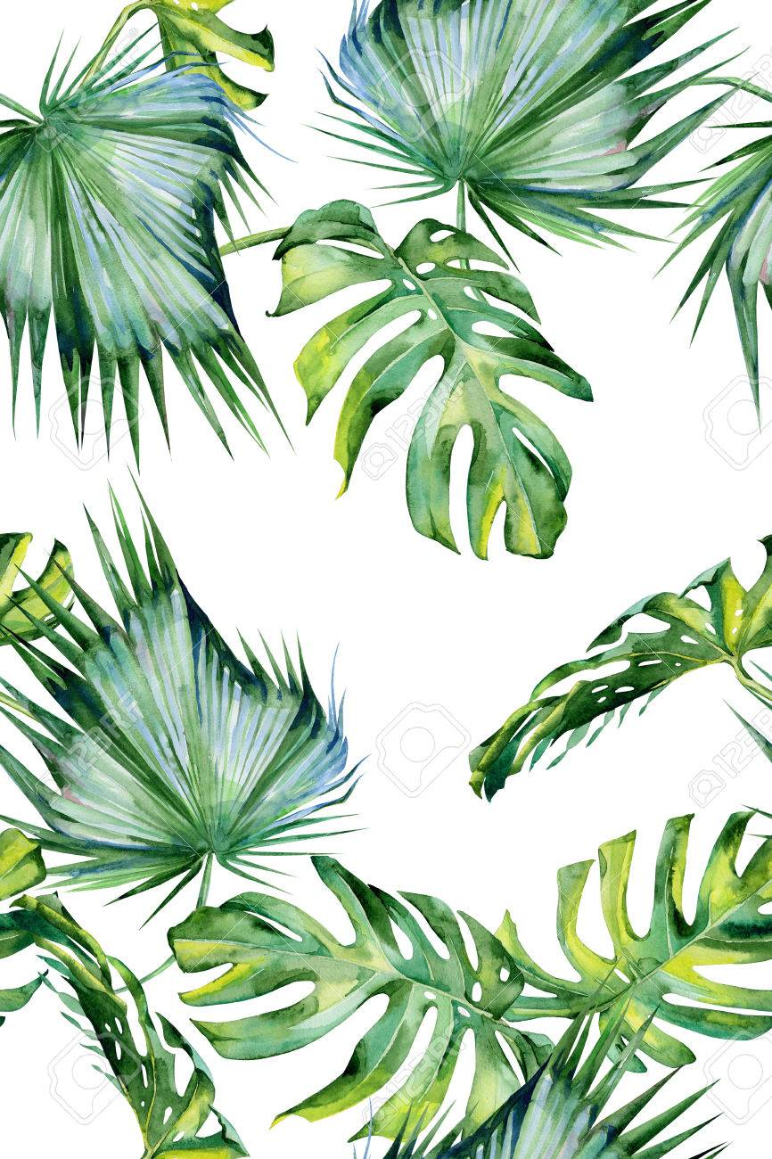 Seamless Watercolor Illustration Of Tropical Leaves Dense Jungle Stock Photo Picture And Royalty Free Image Image 70805324 Download premium png of hand drawn tropical leaves png transparent background by manotang about leaf, leave, botanical, plant and. seamless watercolor illustration of tropical leaves dense jungle