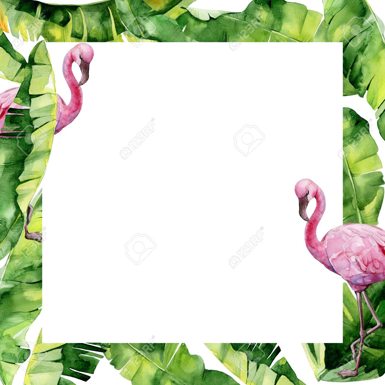 Watercolor Illustration Of Tropical Leaves And Pink Flamingo Stock Photo Picture And Royalty Free Image Image 92269684 Find images of tropical leaves. watercolor illustration of tropical leaves and pink flamingo