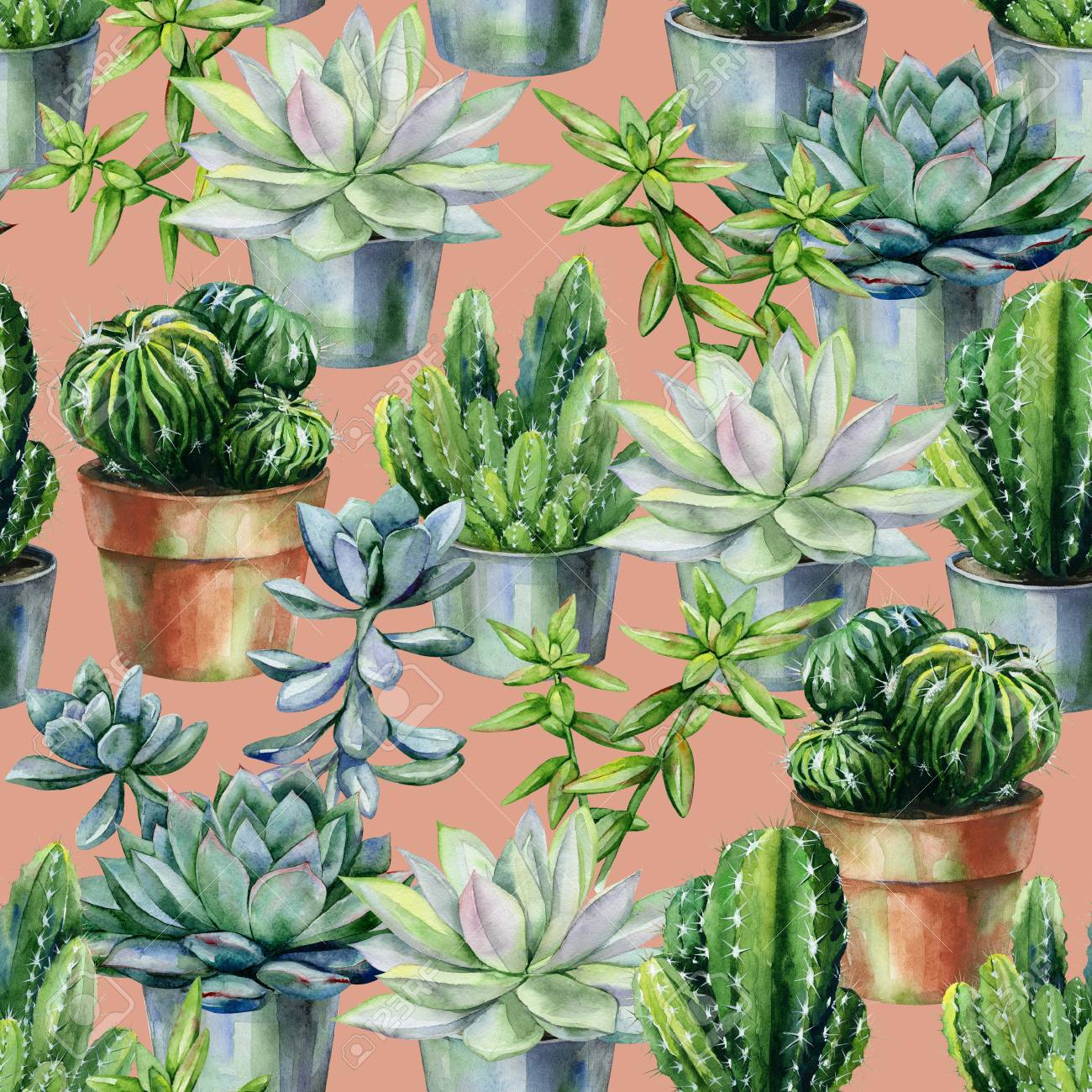Seamless Watercolor Pattern With Cactus And Succulents In Pots Stock Photo Picture And Royalty Free Image Image 110161617