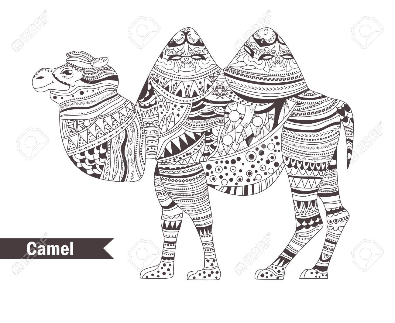 Camel Coloring Page. coloring pages camel countries gt egypt free ... | 1063x1300