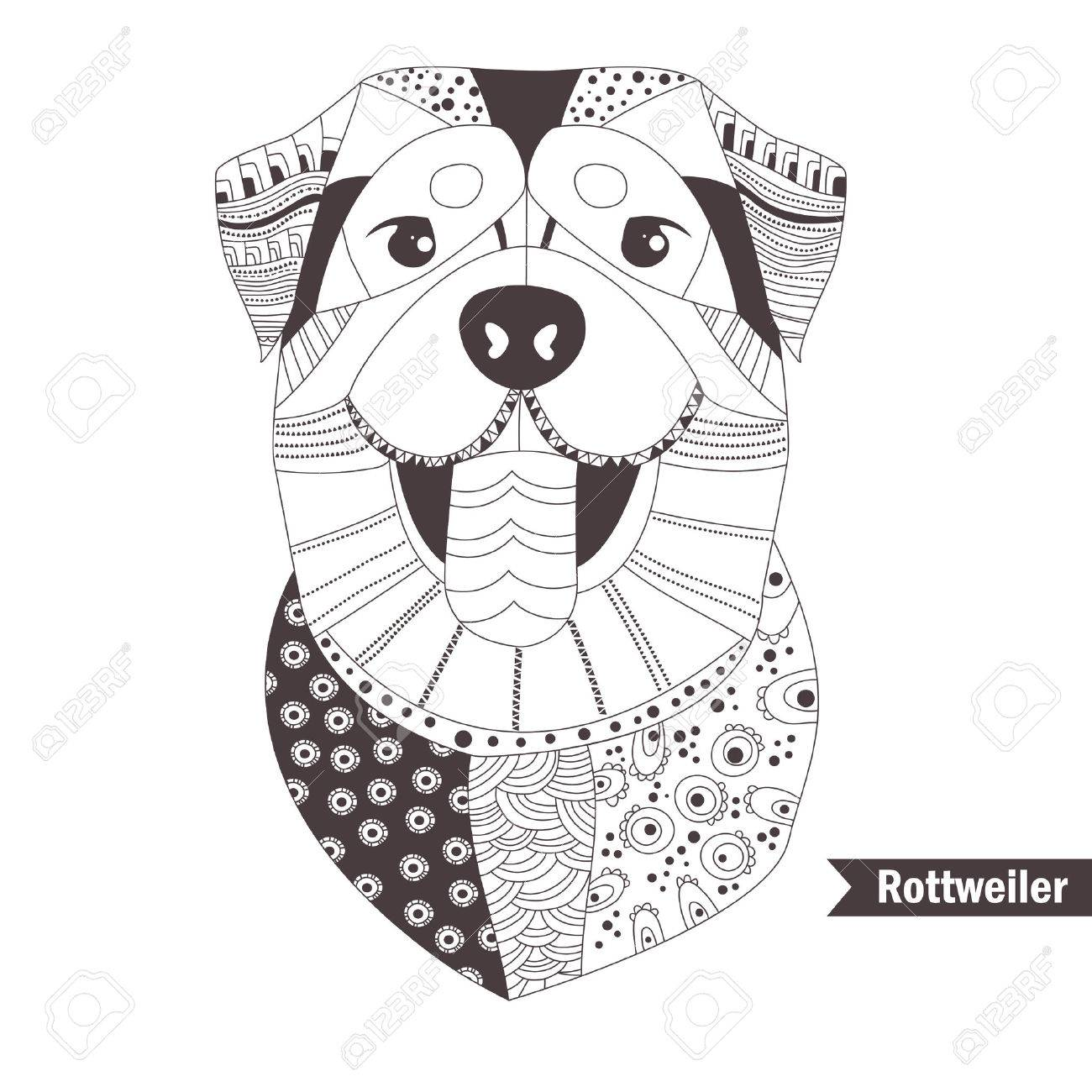 Rottweiler. Coloring Book For Adult, Antistress Coloring Pages. Hand Drawn  Vector Isolated Illustration