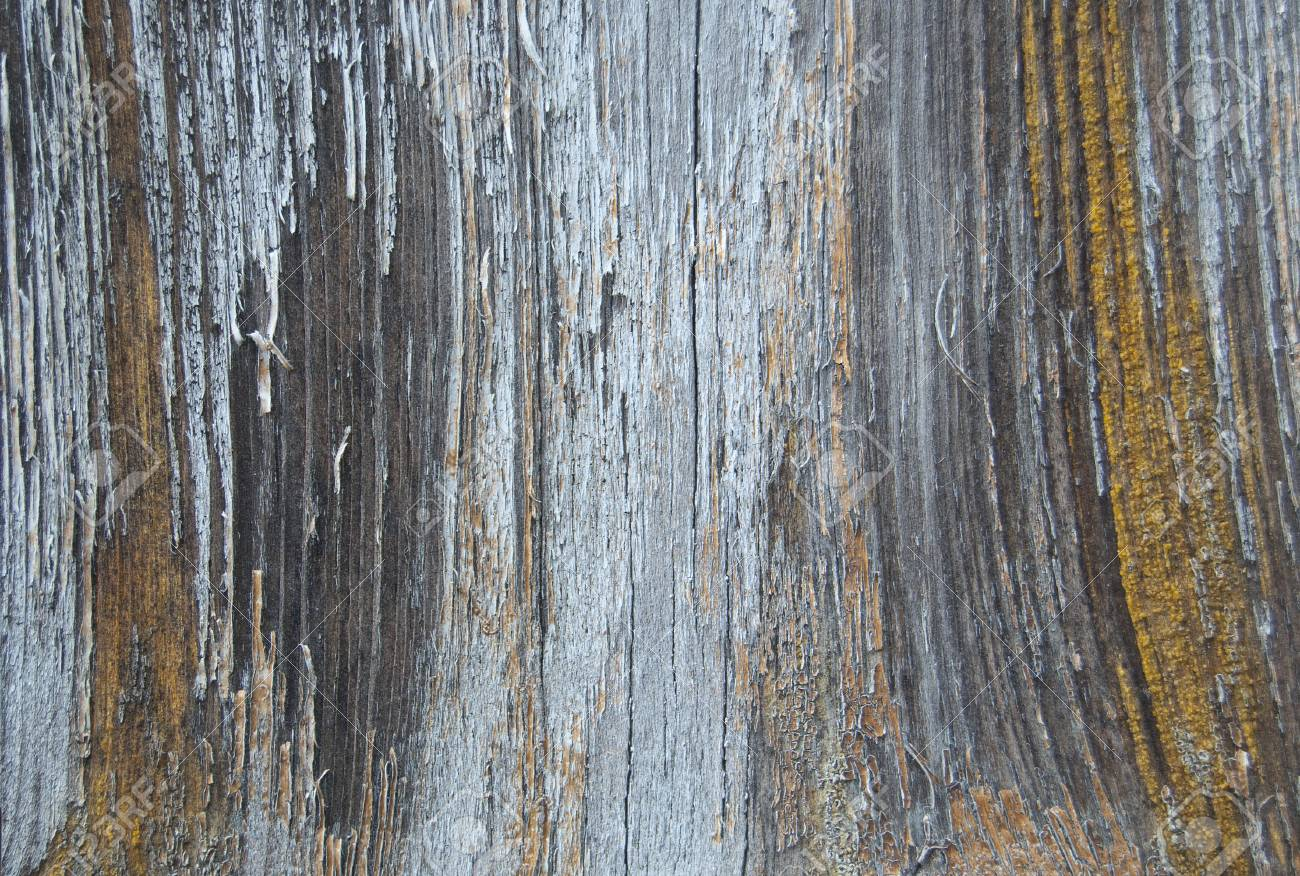 Old cracked paint pattern on a wooden background. Peeling paint. - 92055457