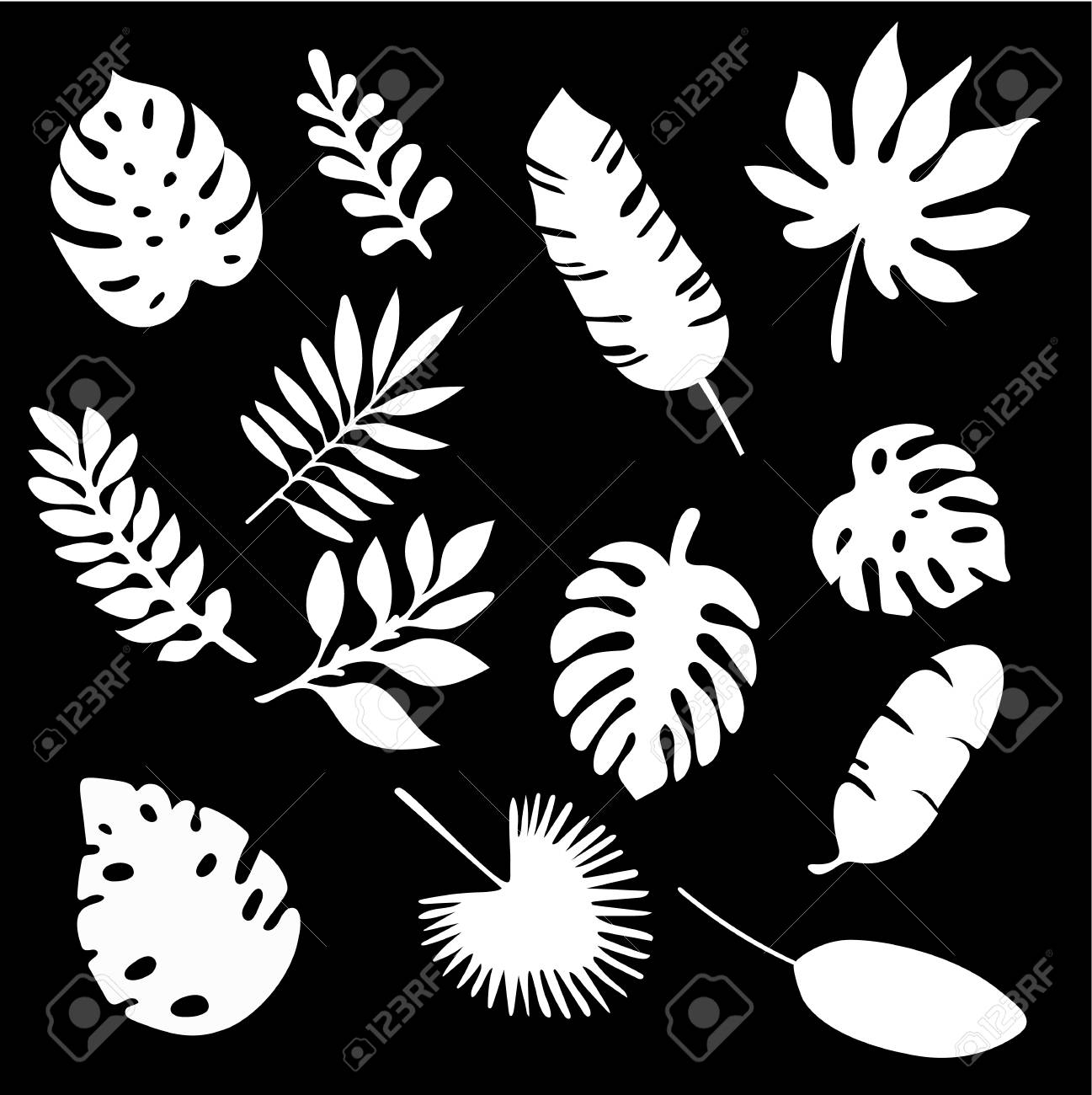 Palm Leaves Silhouettes Set Isolated On Black Background Tropical Royalty Free Cliparts Vectors And Stock Illustration Image 97750649 Beautiful seamless vector floral pattern background with tropical palm leaves, jungle leaves. palm leaves silhouettes set isolated on black background tropical