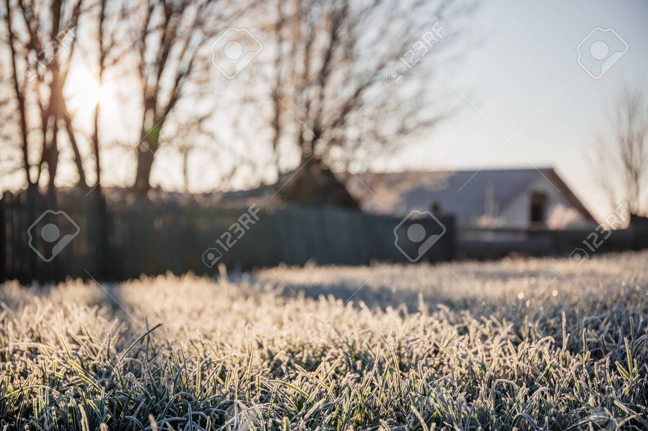 A plot of land with a lawn for the construction of a new house or territory for grazing farm animals in a frosty sunny morning - 133156878