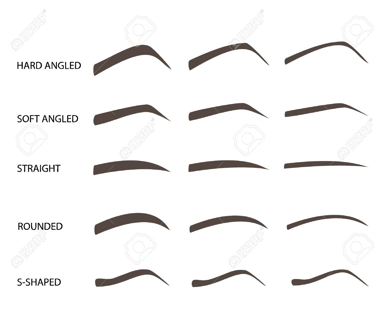 Set of eyebrow shapes  Various types of eyebrows  Trimming  Vector