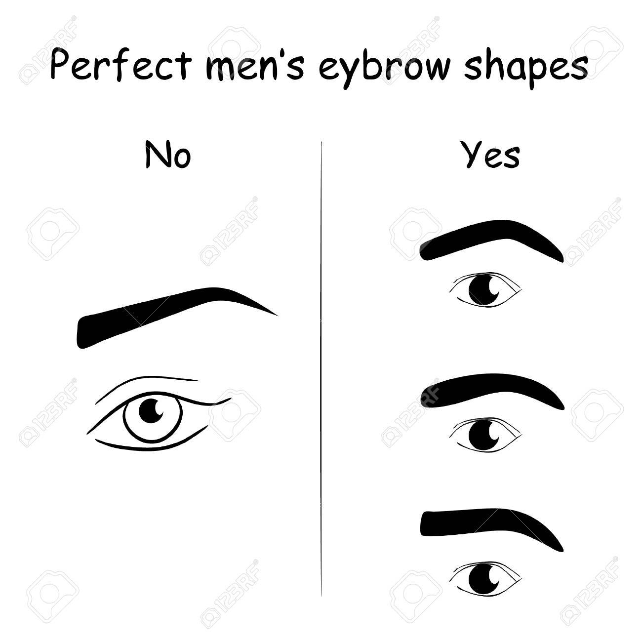 male eyes and eyebrows vector elements illustration how to shape