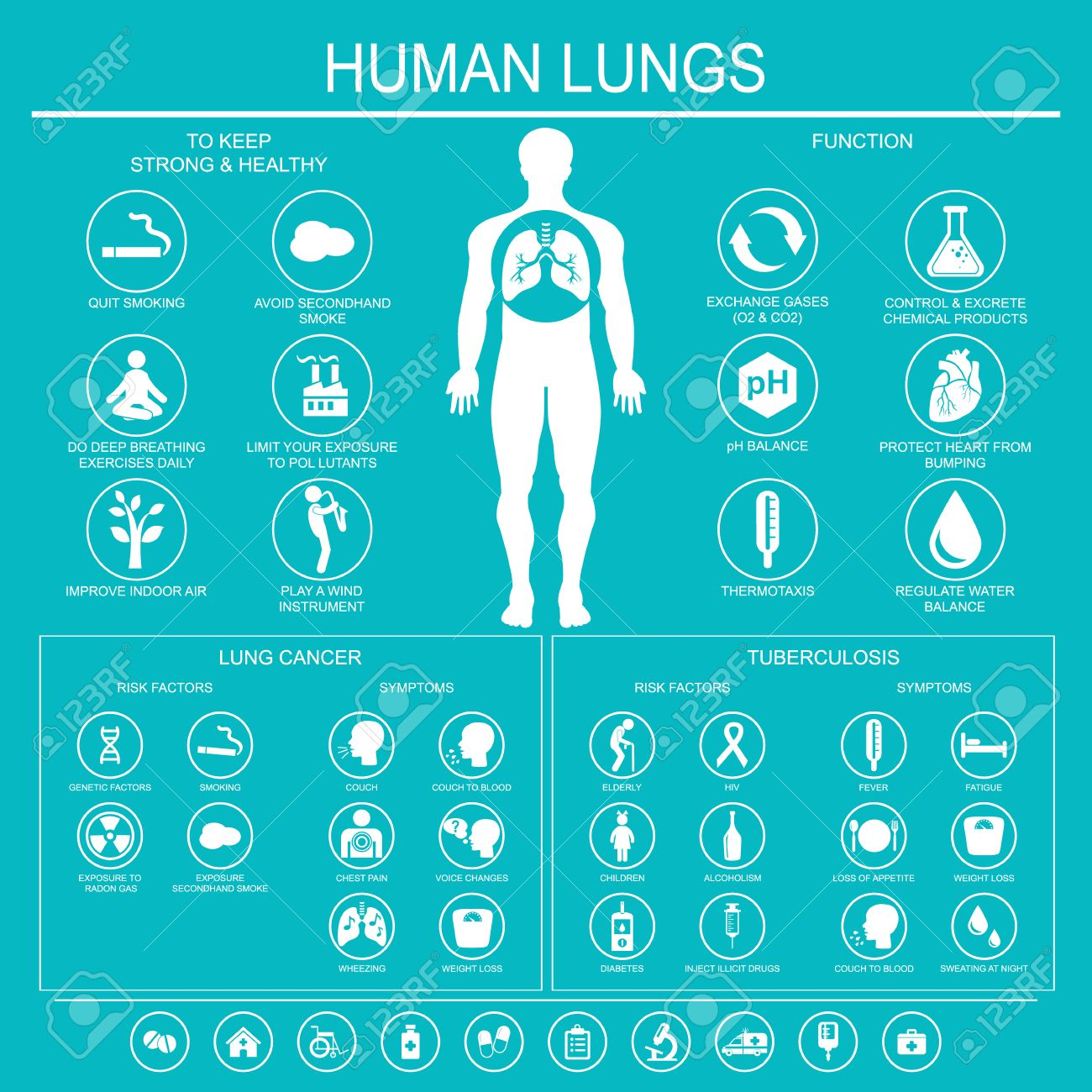 Medical Infographics Lungs Function And Health Lung Cancer