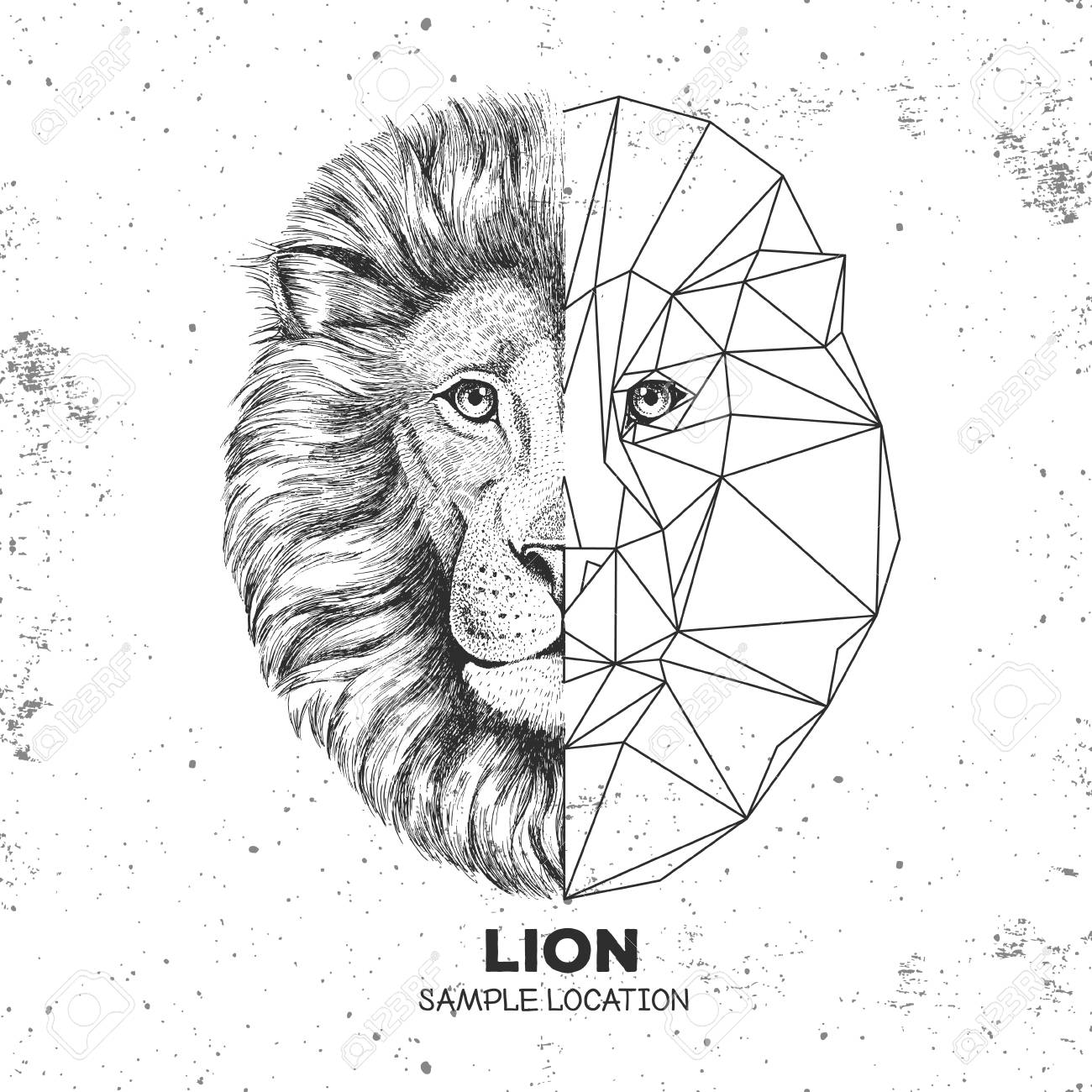 Hipster animal realistic and polygonal lion face - 106602320