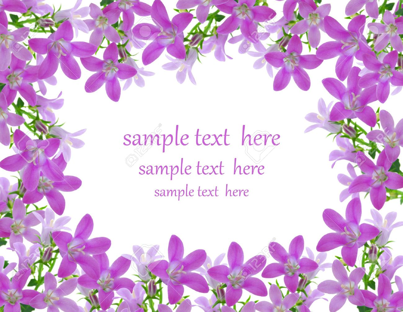 Flowers frame, with room for text Stock Photo - 8880991