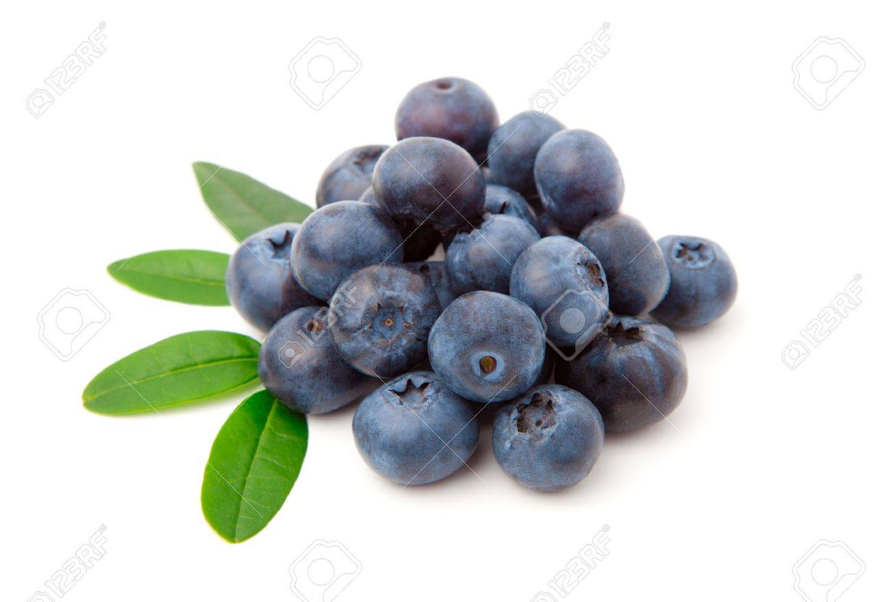 Blueberries with green leaves isolated on white background Stock Photo - 9988251