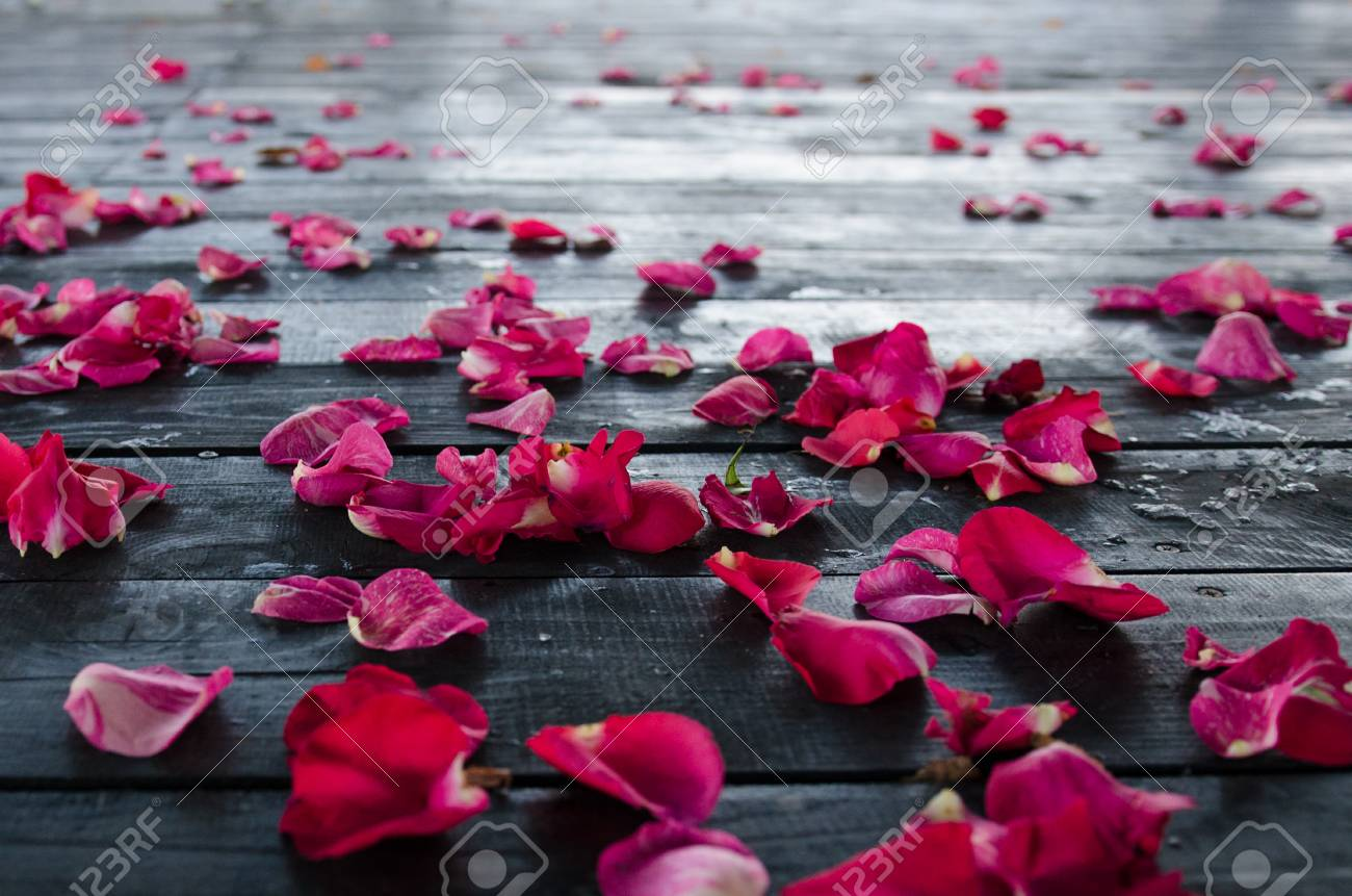 Red Rose Petals On Dark Wooden Textured Floor. Close Up Stock Photo,  Picture And Royalty Free Image. Image 111869213.