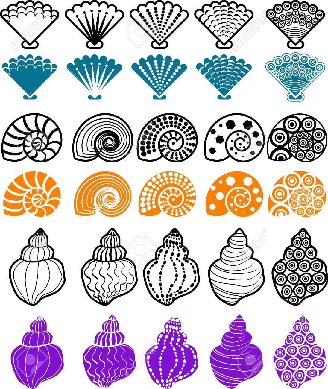 vector illustration for shell pattern design element. Stock Vector - 2438132