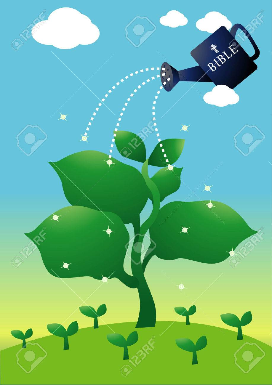 using the words of god just like water to plant the sprout. metaphor for religion. Stock Vector - 3281836