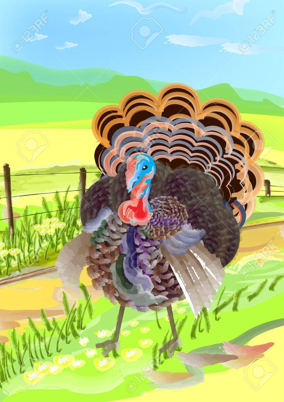 a watercolor style painting for turkey in the village. can use for thanksgiving. Stock Photo - 11340073