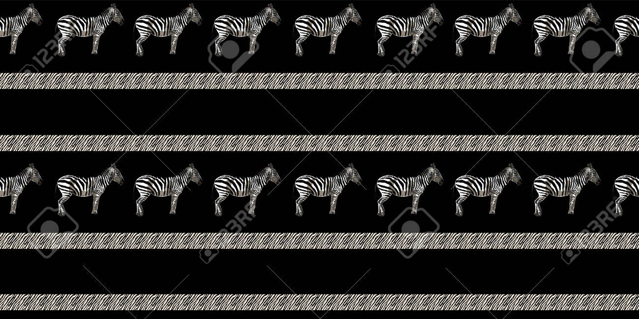 ETHNIC TREND. PAINTING IN AFRICAN STYLE. SEAMLESS AFRICAN PATTERN. TRADITIONAL PATTERN. savanna animals. zebra. Vector illustration. Fashion. - 168195309