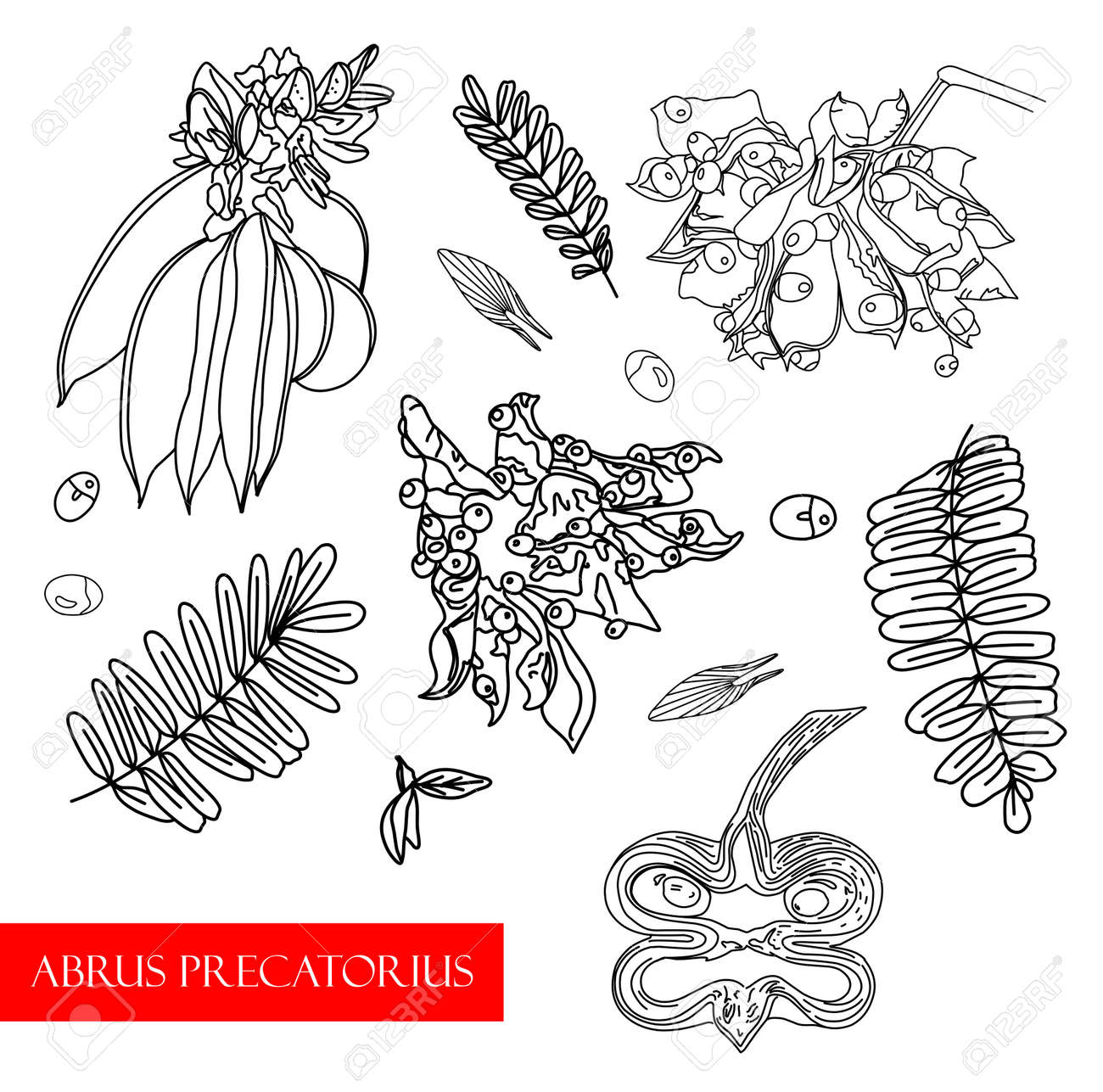 Treatment plant. Ethnoscience Vector illustration - 168196980