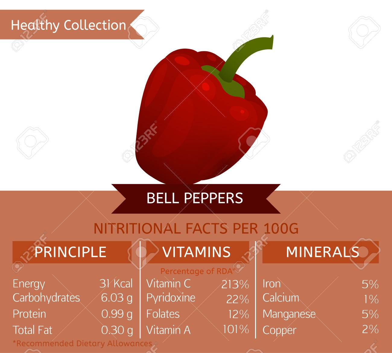bell peppers benefits. vector illustration with useful nutritional