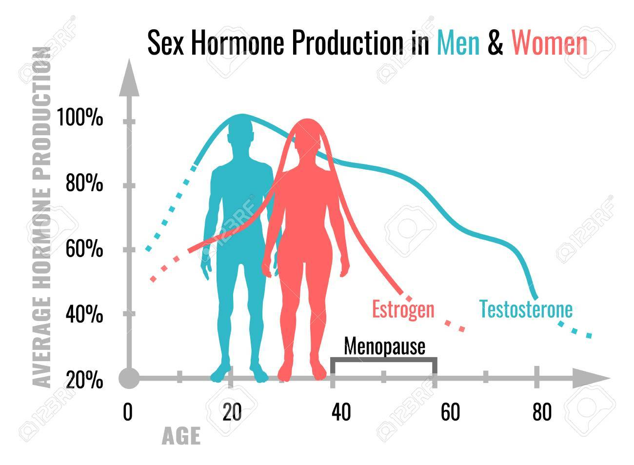 Hormones women produce while having sex