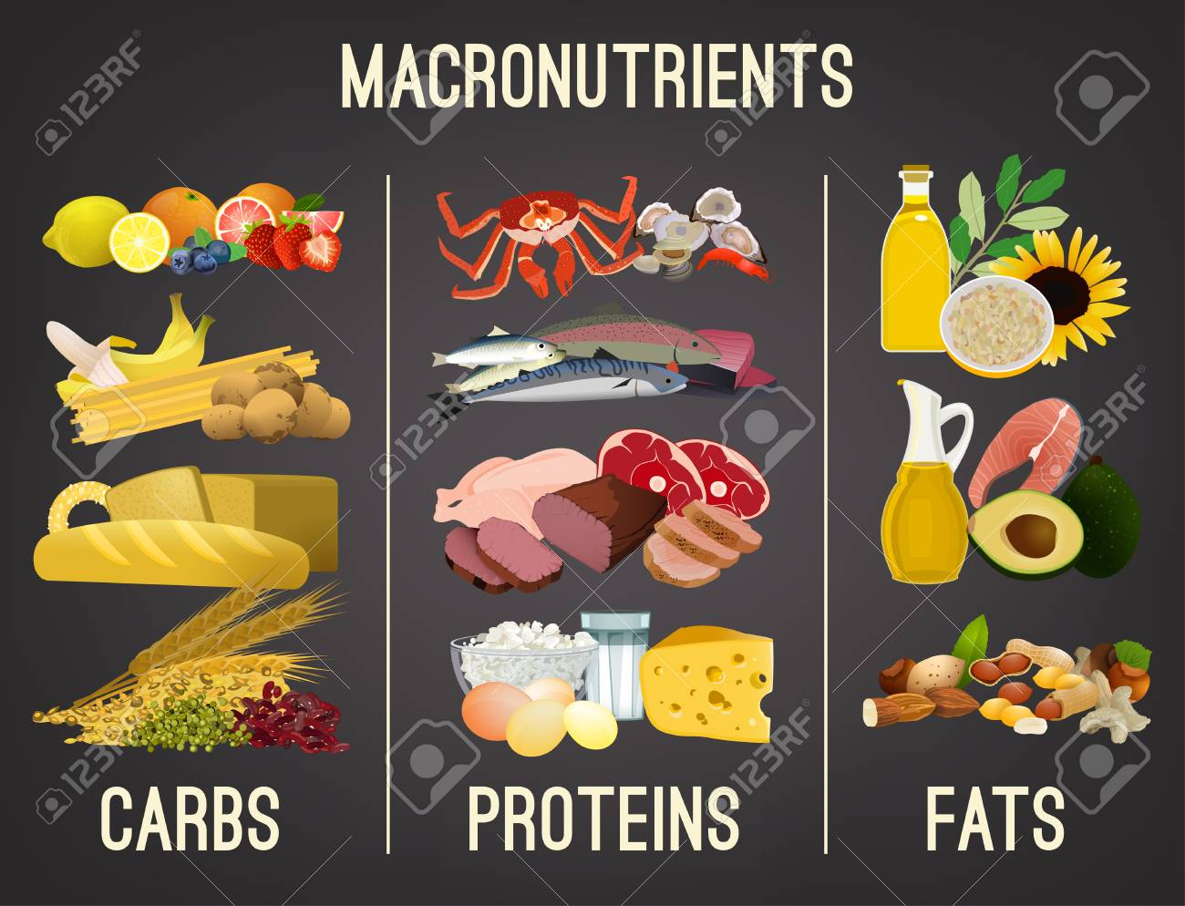 Main food groups - macronutrients. Carbohydrates, fats and proteins in comparison. Dieting, healthcare and eutrophy concept. Vector illustration isolated on a dark grey background. Landscape poster. - 103233357
