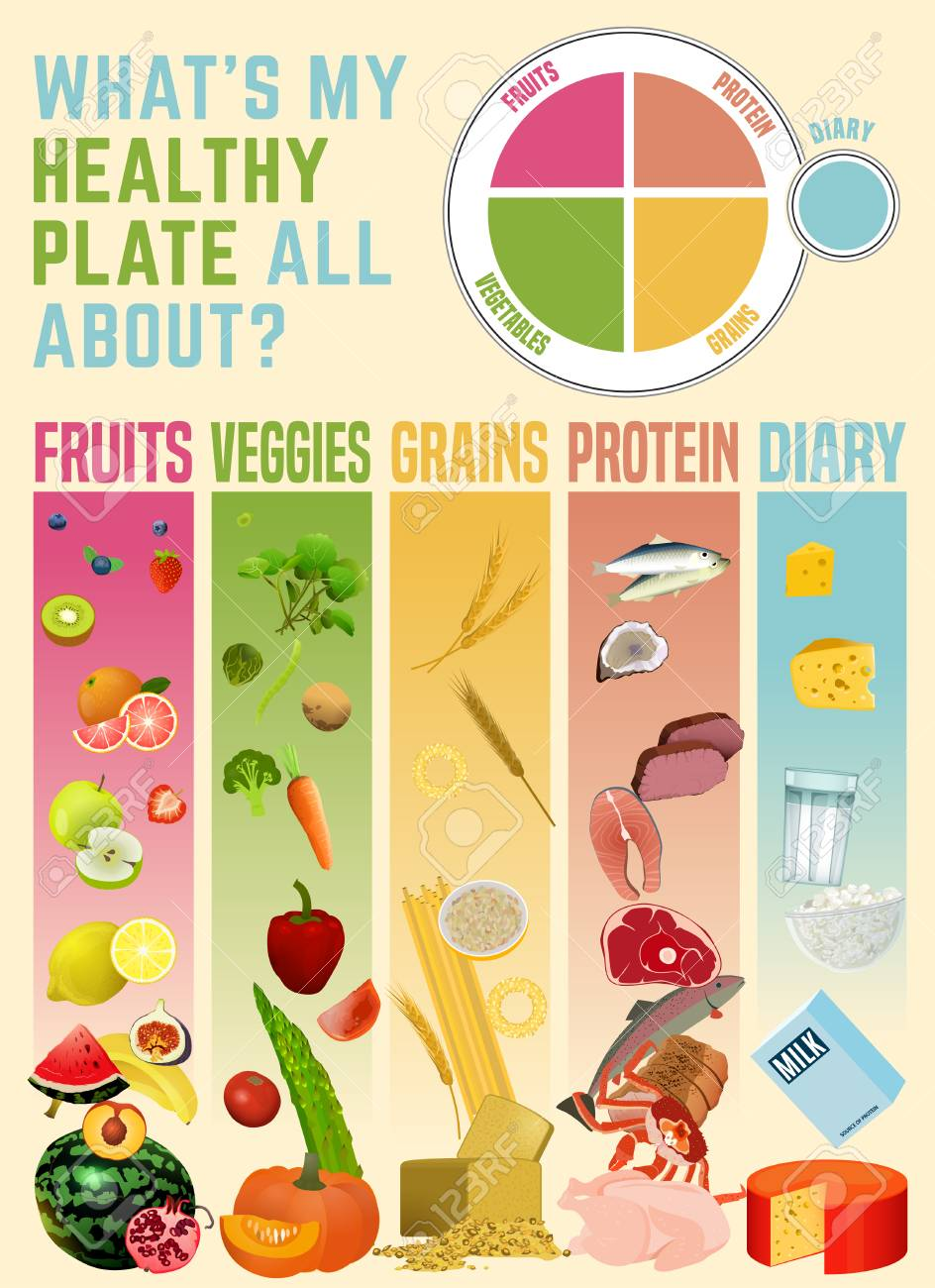 Healthy eating plate concept  Infographic chart with proper nutrition
